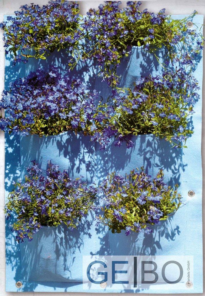 pflanzenwand blau mit 6 taschen teich und gartenbau. Black Bedroom Furniture Sets. Home Design Ideas