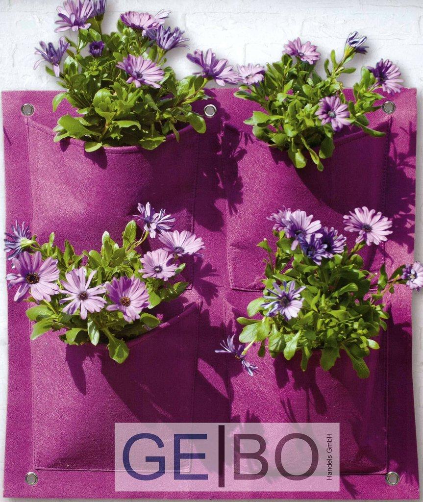 pflanzenwand lila mit 4 taschen teich und gartenbau. Black Bedroom Furniture Sets. Home Design Ideas